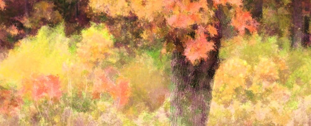 fall color impression again